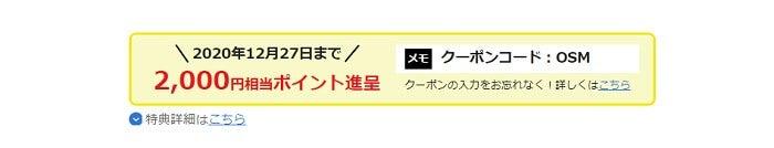ビッグローブモバイルのキャンペーン2(12月)