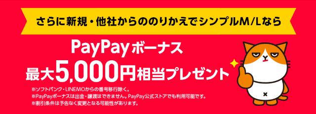本店PayPay5,000円プレゼント
