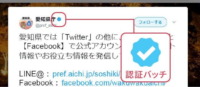 Twiterでは公式アカウントと認定されると、アカウント名の横に青い認証バッチが表示される。なりすましなどの可能性がある有名人などのアカウントが本物かどうかを見分けるポイントのひとつになる。