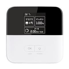 Pocket WiFi 801ZT
